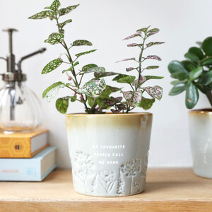 glazed-ombre-nana-planter-0v8a8803-300×300